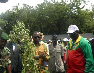 C'est le bosquet communal de Koudougou qui a abrité cette plantation d'arbres. Le choix de ce site réside au fait qu'il constituait dans le temps le poumon de la ville. C'est pourquoi le maire Seydou Zagré a indiqué que c'est un défi que les habitants entendent relever. Pour lui, l'opération vise à lutter contre les changements climatiques.  Le ministre de l'Environnement et du développement durable le Professeur Jean Kouldiaty a pour sa part rappelé la célébration en mai dernier de l'année internationale des forêts sous le thème « Des forêts pour des hommes ». Il a souhaité que ces arbres plantés soient entretenus. Une démonstration de la technique de plantation a été faite aux autorités ainsi qu'au public présent.